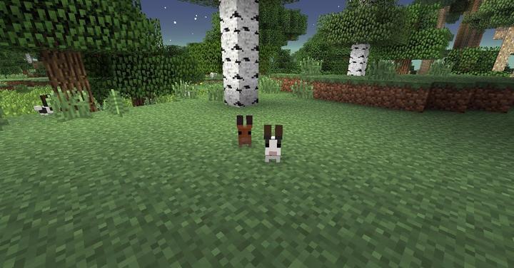 Twilight Forest Bunny