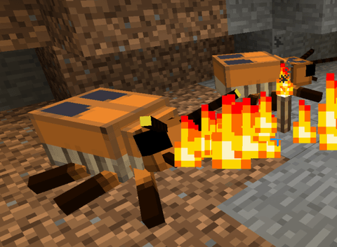 fire_beetle