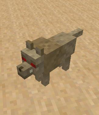 loup du désert
