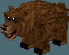 grizzlybear