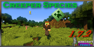 Creeper Species_000000