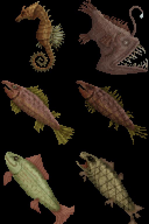 Fish - Imgur