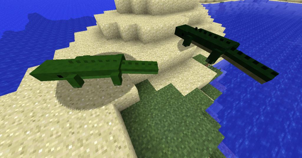 A gauche, le crocodile. A droite, l'alligator.