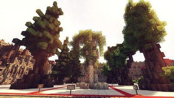 TreeBundle_6
