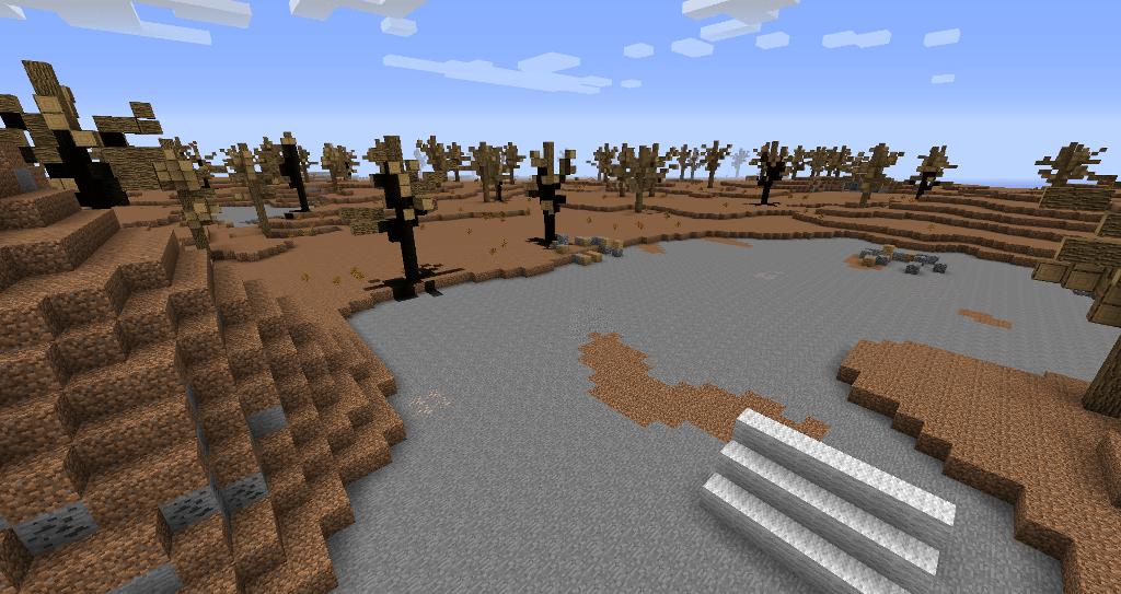 Une forêt morte.