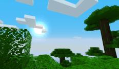 Un aperçu de haut vu d'un arbre dans une jungle