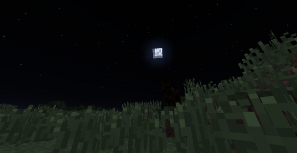 Une Dark Beast (Bête Noire) dans une plaine lors dans le pleine lune.