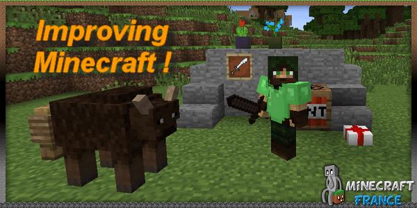 Improving Minecraft