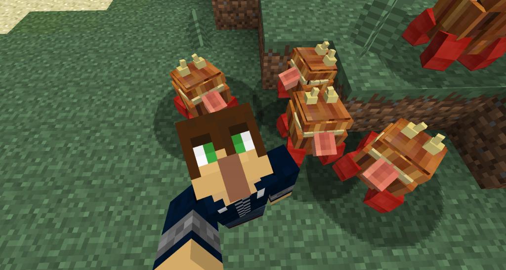 Une armée de Chesters ! (photo prise avec Minecraft Selfies)