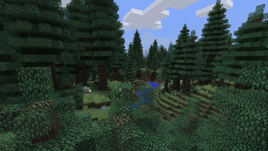 Biome O' Plenty - Forêt de sapins