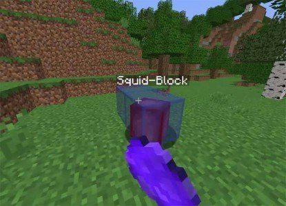 Squidy1