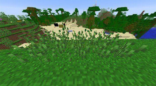 Tall Prehistoric Grass