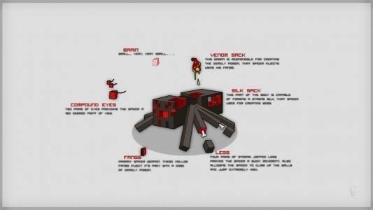 minecraft_spider_anatomy_by_dentvanboo-d5mwhat