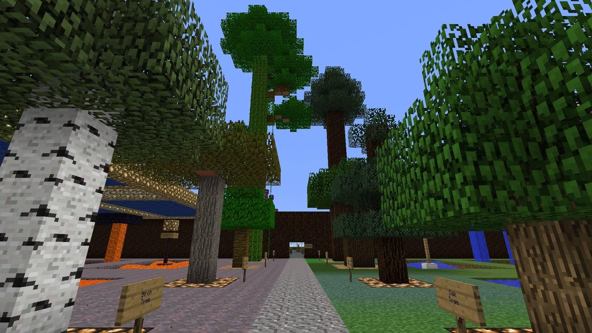 les arbres dans la Test Map