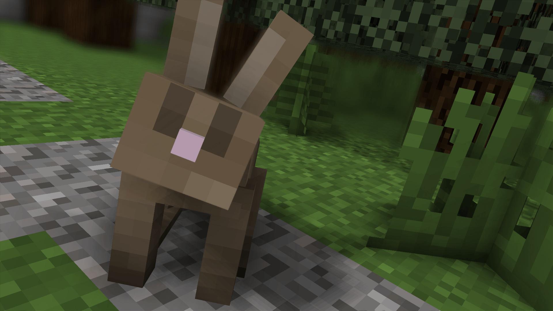 Un lapin tout mignon, un Wallpaper de GreenLenux