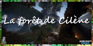 La_foret_de_Cilene