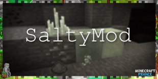 saltymod
