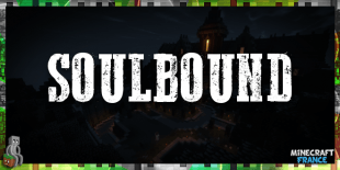 Soulbound - Une