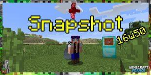 Snapshot 16w50a