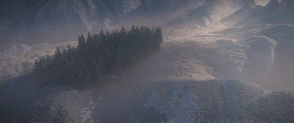 Une forêt de pins au milieu des montagnes
