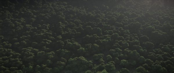 Forêt Minecraft avec le shader Continuum