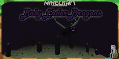Photo of [Addon Bedrock] Baby Ender Dragons