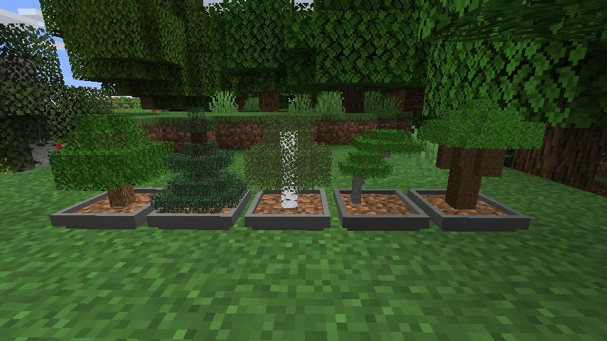 Mod Bonsai Trees Mod 1 12 2 1 15 2 Minecraft France