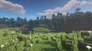 BSL Shaders
