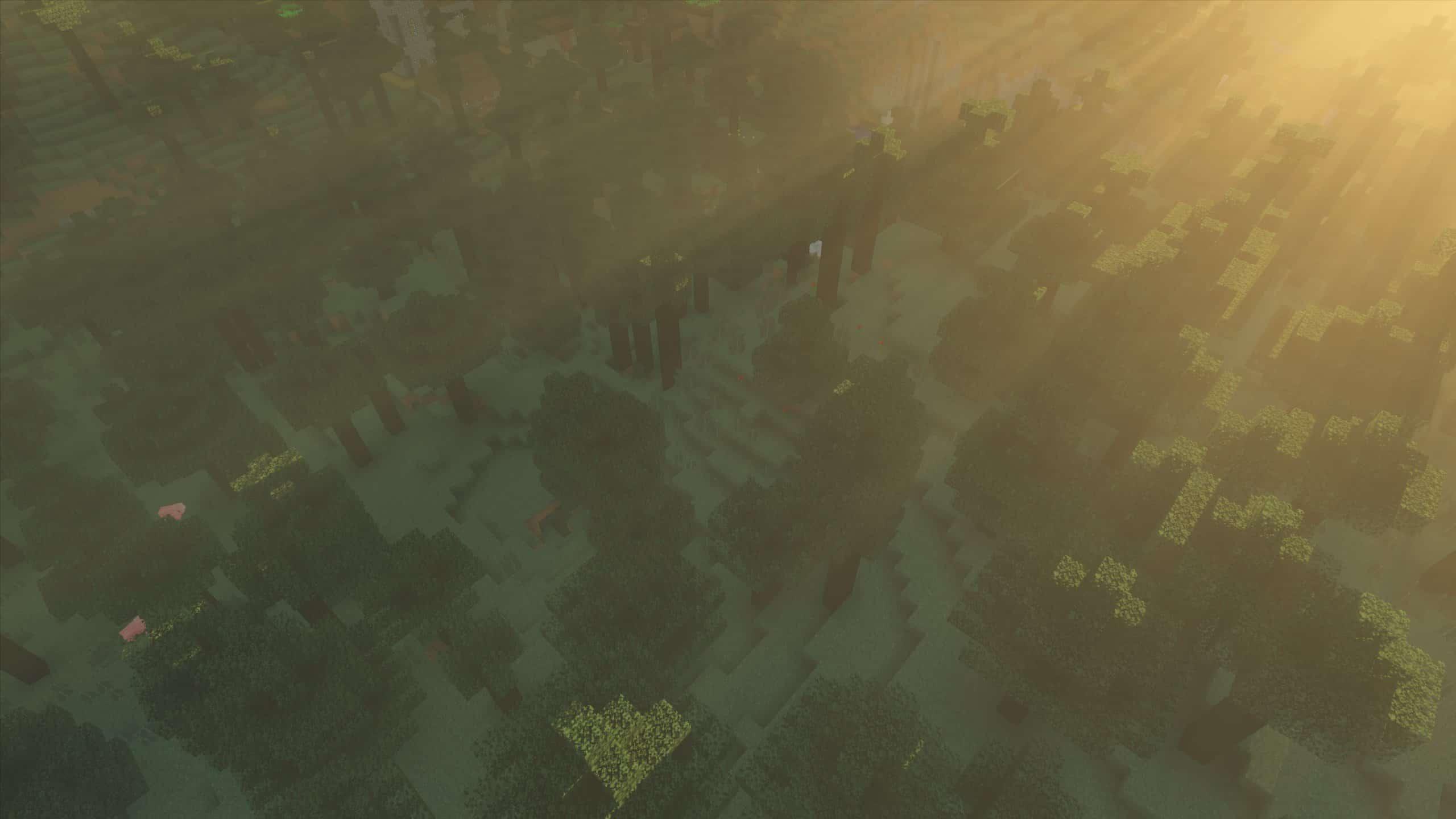 Kappa Shader : Des rayons de soleil dans une forêt