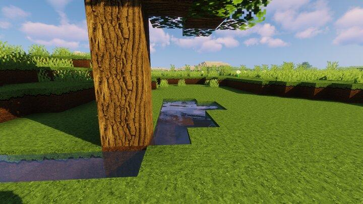 Les textures détaillées d'un arbre