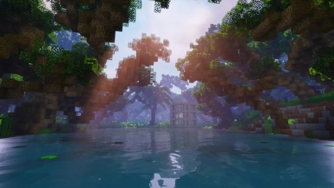 Marais dans la jungle