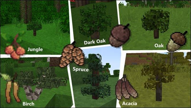 Imperial Odyssey : Pousses d'arbre