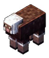 Le mouton à poil ras
