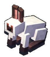 Le lapin à la patte boueuse