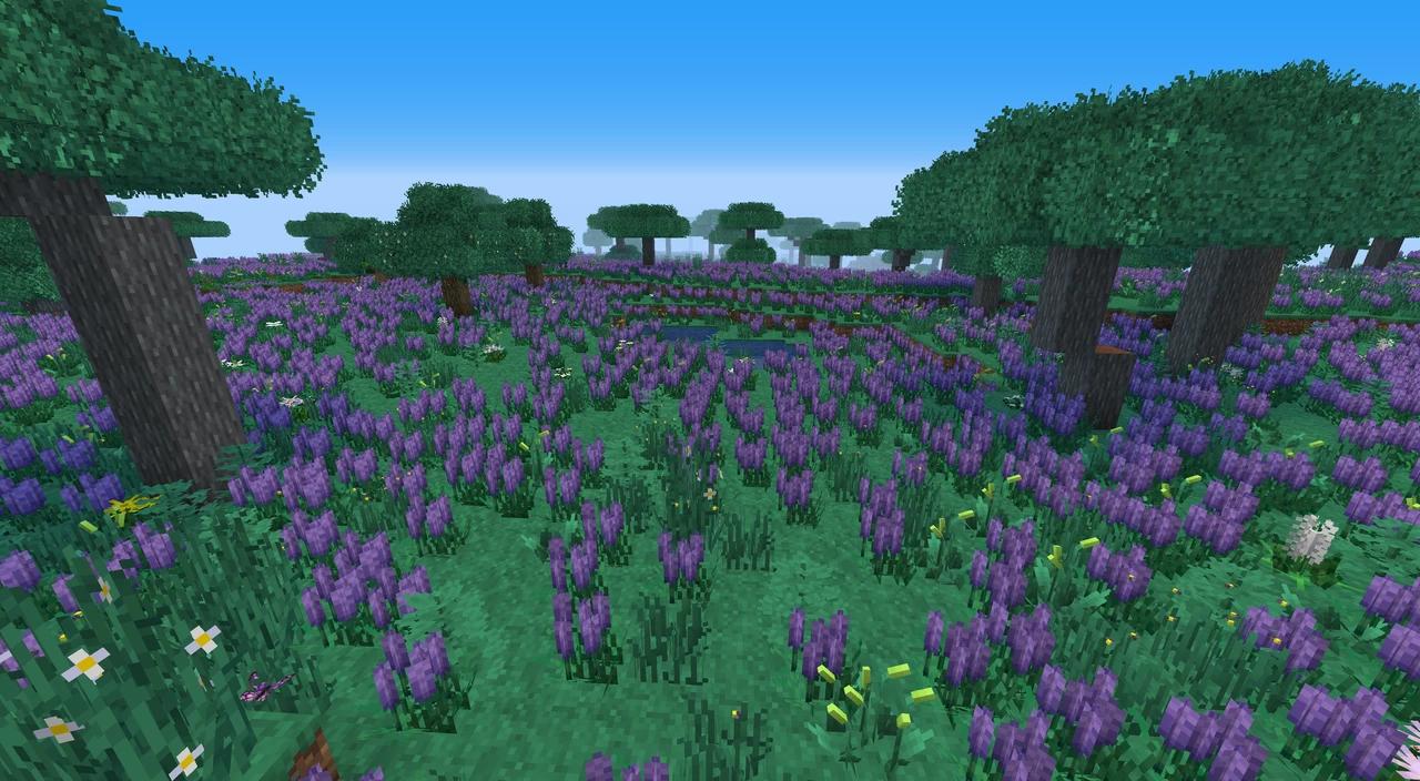 shengling - Un grand champs de fleurs
