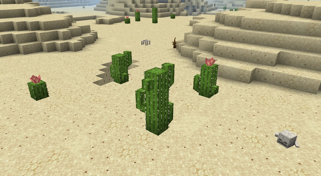 shengling - Un désert avec des cactus et des restes de squelettes