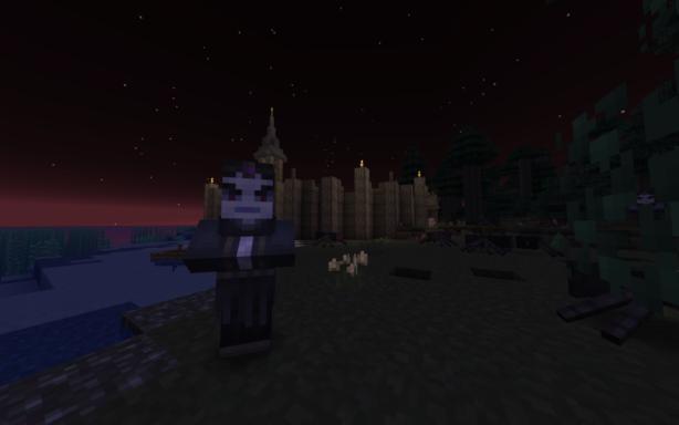 Un sorcier dans Minecraft