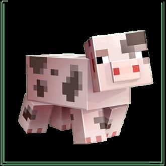 Cochon tacheté