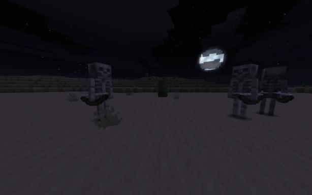 Des squelettes de nuit dans un biome désert
