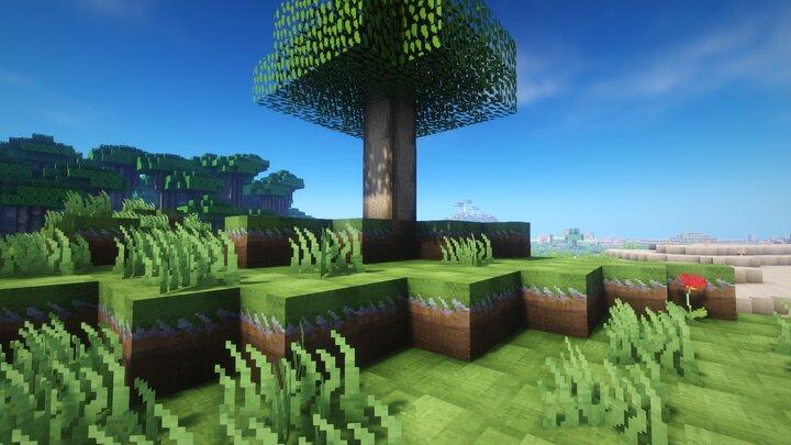 Un arbre de type bouleau