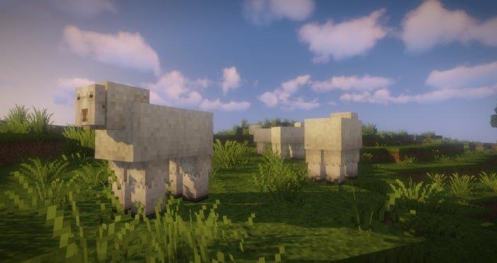 Epic Adventures moutons