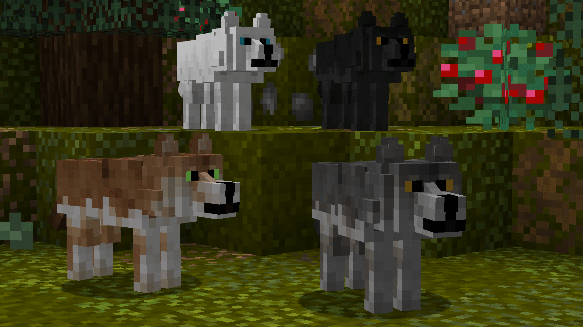 Resource Pack : Better Dogs 1.8 - 1.16 - Minecraft-France