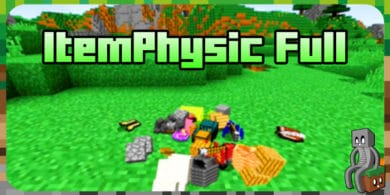 Mod : ItemPhysic Full